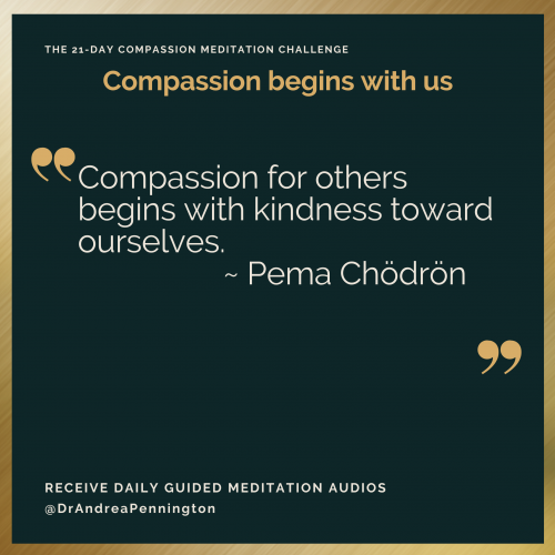 Pema Chodron replacement2
