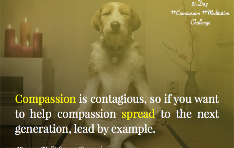 Day 10:  Compassion is contagious