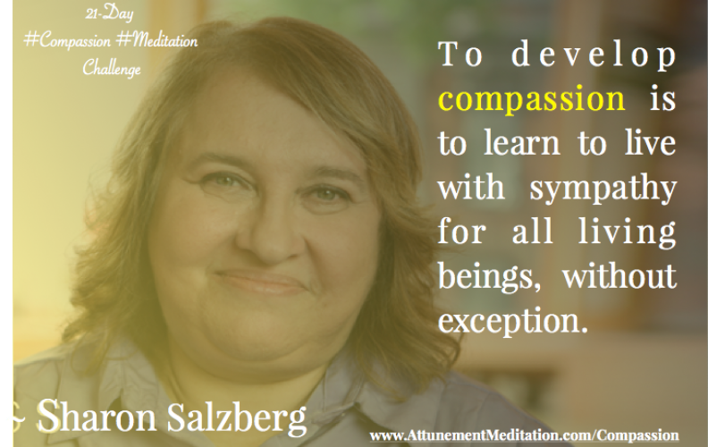 Day 13: Live with sympathy for all beings ~ Sharon Salzberg