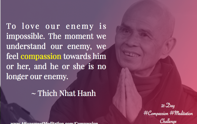 Day 17: To love our enemy is impossible ~ Thich Nhat Hanh
