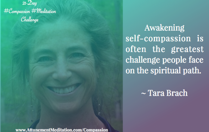 Day 14: Self-compassion is a challenge ~ Tara Brach